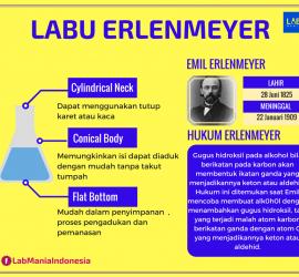 Labu Erlenmeyer
